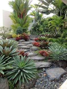 53 Best Backyard Garden Landscaping and Design Ideas - Backyard Landscaping Florida Landscaping, Succulent Landscaping, Backyard Garden Landscape, Small Backyard Landscaping, Tropical Landscaping, Garden Landscape Design, Landscaping With Rocks, Landscaping Tips, Landscape Designs