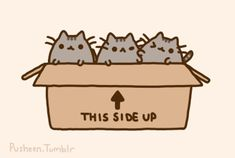 pusheen and brother and sister :D
