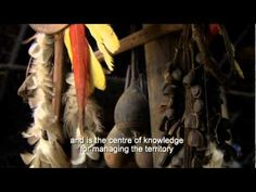 Hee Yaia Keti oka - Conhecimentos Tradicionais dos Xamãs Jaguar do Yurupari (Traditional Knowledge of the Jaguar Shamans of yurupari)