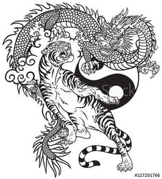 Black and white tattoo vector illustration included… Chinese dragon versus tiger. Black and white tattoo vector illustration included Yin Yang symbol Dragon Tiger Tattoo, Dragon Tattoo Images, Dragon Tattoo For Women, Japanese Dragon Tattoos, Dragon Tattoo Designs, Chinese Tattoos, Dragon Yin Yang Tattoo, Dragon Tattoo On Back, Tiger Tattoo Back