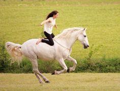 aмazιng! ι'м ѕpeecнleѕѕ pιc: @dancinghorses_ ❣ - - wιr нaвen нeυтe ғerιenвegιnn, wann нaвт ιнr? - - #vip_picture_