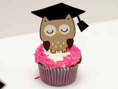graduation party wise owl cupcakes