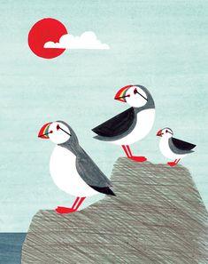 Anna See, puffins, design, graphic, texture, nature, bird, colour, sea side, illustration