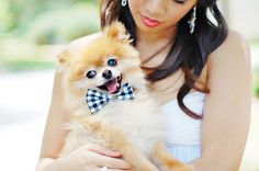 A pet plays an important role in a couple's life, and it's not surprising that many couples choose to customize their weddings to include their furry companions. Wedding dogs, decked out in little tuxedos or wearing a wreath of roses around their necks, can act as the best man, maid of honor, ring bearer, or …