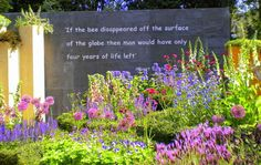 Or better yet, plant a bee garden!