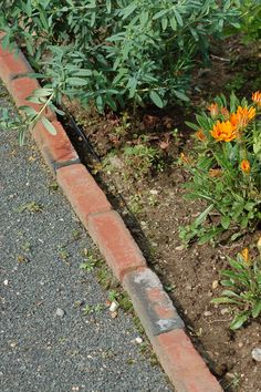 "Bricks can make for an attractive edging material (sometimes used in conjunction with black plastic edging, as in this picture) for flower beds (the flower in the bed shown here is a gazania daisy). In my own project, which I discuss here, I used pavers and included a ""mower strip"" to make my life easier when I have to mow the lawn: http://landscaping.about.com/od/toppicks/ss/garden_edging.htm"