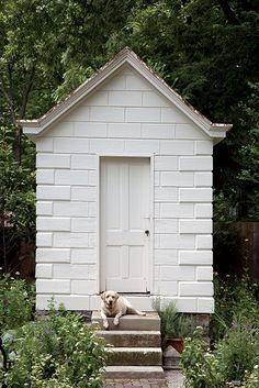 The converted potting shed, with Jon Carloftis's dog, Puck, standing guard. Photo Credit: Caroline Allison. #southernhomes