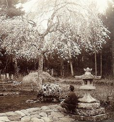 RUSTIC JAPAN -- Springtime in the Old Park at Kurotani, Kyoto  Half-stereoview crop from a Sample Set of Classic Meiji and Taisho-era Japan Stereoview and Lantern-Slide images by Japanese Photographer T. ENAMI (1859-1929). See www.t-enami.org