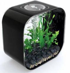 biOrb Life 30 Black Aquariumm fish tanks for sale.