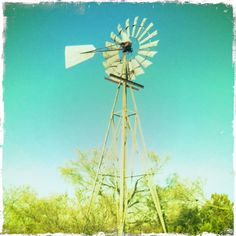 Windmill's are so peaceful. Zach and I want to try to find one for either the backyard or front yard, or maybe back by the barn at the start of our field.