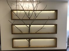 Tree Shop Interior Design, Bathroom Interior Design, Interior Decorating, Diy Wooden Picture Frames, Cheap Home Decor, Diy Home Decor, Family Wall Decor, Branch Decor, Woodworking Projects Diy