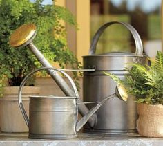Galvanized Metal Watering Cans   review   Kaboodle