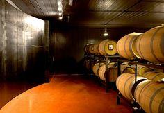 Vino: Lungarotti a anteprima Sagrantino