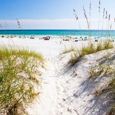All About Seagrove  - Things to Do on 30A in South Walton, Florida: Attractions, Travel Guide - Coastal Living