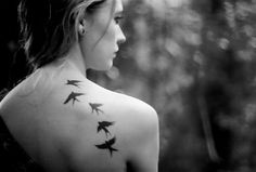 .If your a bird... I'm a bird