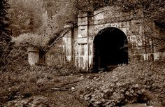 Flourish & Decay - old Cascade rail tunnel in Scenic, WA, the site of our country's biggest rail disaster in 1911.