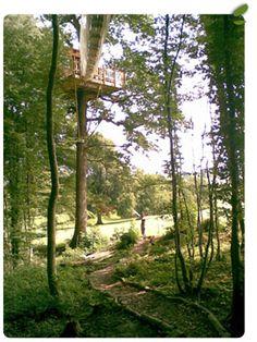 Le Chêne perché - parcours aventure en hauteur et cabanes dans les arbres