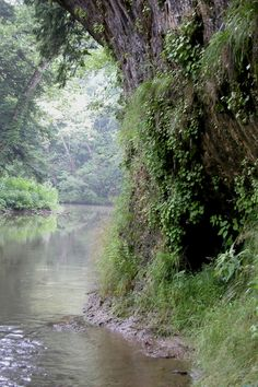 10 secret spots in Ohio where nature will completely relax you | Only in Ohio