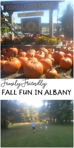 New York has so much to offer aside from New York City. Come explore a bit of Albany with us. #CambialoConQS #ad