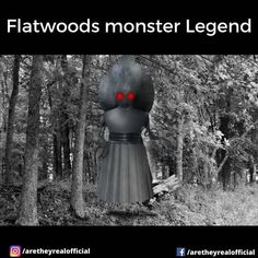 """Are They Real on Instagram: """"Six local boys and a woman report seeing a UFO land, and saw a spade-headed creature near the landing site. There are more urban legend…"""" Alien Facts, Flatwoods Monster, Ufo Sighting, Urban Legends, Mystery, Creatures, Woman, Mysterious, Boys"""