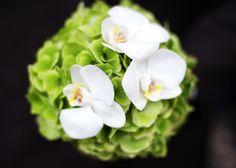 schlichter Brautstrauß Orchidee weiß grün