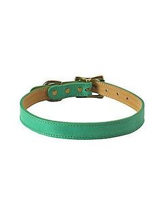 Graphic Image Leather Dog Collar