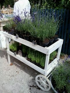 Nice cart for selling plants. I can add to this