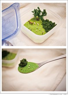 In Tupperware. | 20 Tiny Worlds Where You'd Love To Live