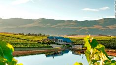 Creations Wines - Hemel & Aarde Valley - near Hermanus. You drive up an 18-kilometer dirt road to reach the farm, set high on a mountain plateau. Surrounded by vast skies and near the Atlantic, winemaker JC Martin aims to make elegant wines. His syrah, grenache and pinot noir are particularly good and best appreciated in the restaurant with its floor to ceiling windows. A food & wine matching menu with canapés costs R125 ($12) & you can even try wine with chocolate (R90/$8). Tel +27 28 212…