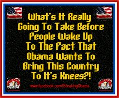After reading President Obamas own words I do believe he wants to bring America to her knees. He's succeeding.