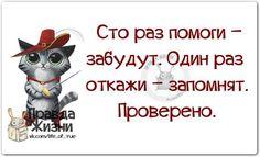 https://pp.vk.me/c622329/v622329123/15c58/MasbdZ0oOs8.jpg