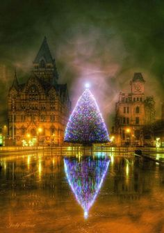 It's a magical photo taken by amateur photographer Jody Grenier of the Christmas Tree and Ice Rink at Clinton Square in downtown Syracuse, New York. Beautiful !