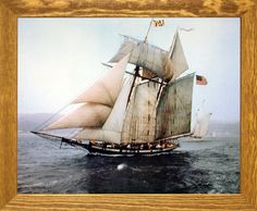 The Pride of Baltimore Sailing Vessel Sailboat Vintage Sh... https://www.amazon.com/dp/B00H7TD0CM/ref=cm_sw_r_pi_dp_x_zDj7xb09QYTKF