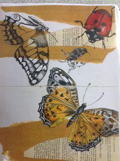 ideas for a level art sketchbook inspiration fashion design A Level Art Sketchbook, Sketchbook Layout, Sketchbook Inspiration, Sketchbook Ideas, Sketchbook Project, Butterfly Art, Flower Art, Butterflies, Art Flowers