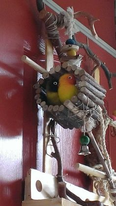 Chewable little homes made out of (home grown) willow branches and rope. #DIY #Bird #toy