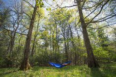 New Product: Atlas XL Suspension System #hammock #newproduct