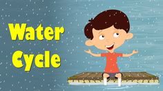 """You will learn about """"Water Cycle"""" in this video. The Sun heats up the water from oceans, lakes and rivers and water changes into water vapour by the process..."""