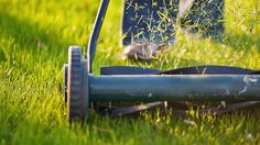 9 Mowing Tips for the Best Lawn on the Block: The grass is always greener, especially if you follow these useful tips.