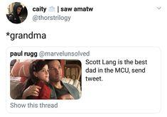 Scott - Antman and the Wasp Marvel Funny, Marvel Dc Comics, Marvel Avengers, Avengers Memes, Marvel Memes, I Understood That Reference, Scott Lang, Dc Movies, Tony Stark