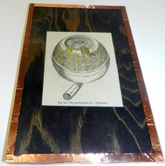 Cool vintage anatomy print of an eyeball- mounted AND framed, only $20!