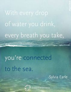 64 Best Water Quotes Images Truths Water Quotes Save Our Earth