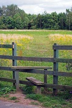 6 Easy And Cheap Useful Ideas: Dog Fence Run decorative fence balconies.Old Wire Fence cedar fence farm.Old Wire Fence. Front Yard Fence, Farm Fence, Dog Fence, Fence Gate, Fenced In Yard, Pallet Fence, Cedar Fence, Fence Landscaping, Backyard Fences