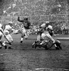 cleveland browns 1950 football team  72e29ae9f