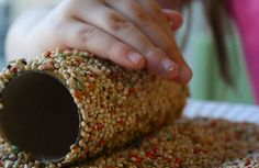 Toilet-roll Bird Feeder Craft - 10 Things To Make With A Toilet-roll Tube