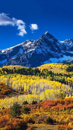 I must go to Ridgway, Colorado.especially to see the fall colors Landscape Photos, Landscape Photography, Nature Photography, Beautiful World, Beautiful Places, Beautiful Pictures, Colorado Mountains, Nature Scenes, Mellow Yellow
