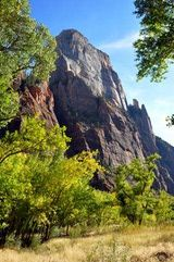 Zion National Park Rock Climbing: The Great White Throne, looming over Zion Canyon, is considered the tallest sandstone cliff in the world.