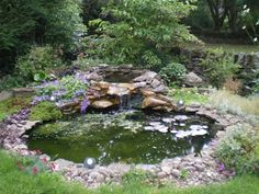 Garden Design: Garden Pond Ideas