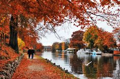 Fall in Silkeborg, Denmark.