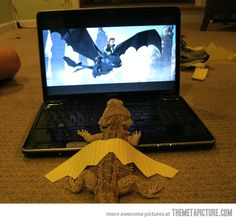 To get this, it helps if, a: you've seen the movie How to Tame Your Dragon; and b: you own a bearded dragon lizard. How To Train Your, How Train Your Dragon, Train Dragon, Funny Animals, Cute Animals, Funny Lizards, Odd Animals, Funniest Animals, Animals Photos