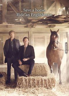 Save a horse, ride an...